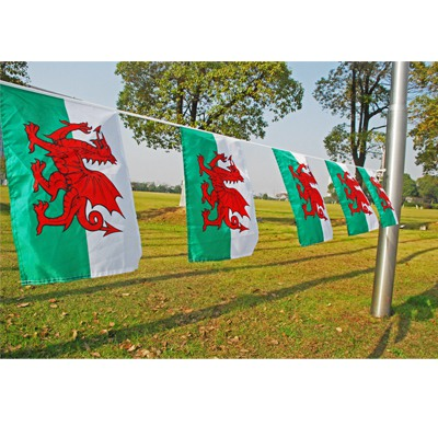 Wales Buntings 75D Polyester